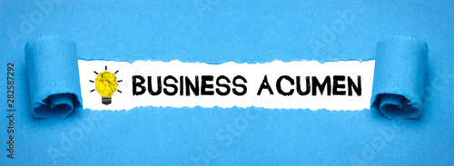 Business acumen Canvas Print