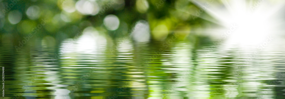 Fototapety, obrazy: blurred image of natural background from water and plants