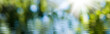 Leinwanddruck Bild - blurred image of natural background from water and plants
