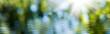 Leinwandbild Motiv blurred image of natural background from water and plants