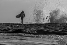 A Silhouette Of A Surfer Walking Across Rocks As A Wave Crashes Against The Rock In The Distance And A Seagull Flys Across The Frame