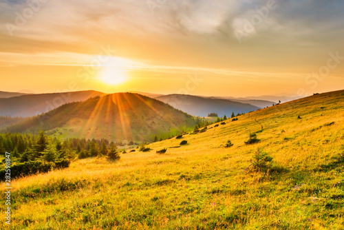 Poster Orange Sunset in the mountains with forest, green grass and big shining sun on dramatic sky