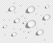Clear Round Water Drops On Smooth Surface, Realistic Vector Illustration