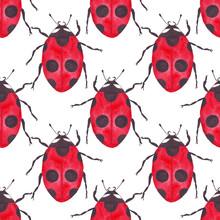 Watercolor Ladybug Seamless Pattern On White Background Regular Simple