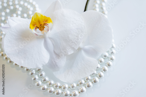 Photo sur Toile Les Textures pearl and white orchid on a white glas
