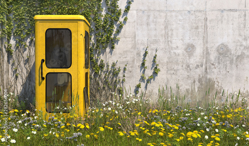 Obraz na plátně Single old yellow phone booth in retro style in an abandoned place with grass, overgrown with weeds and wildflowers on a summer sunny day