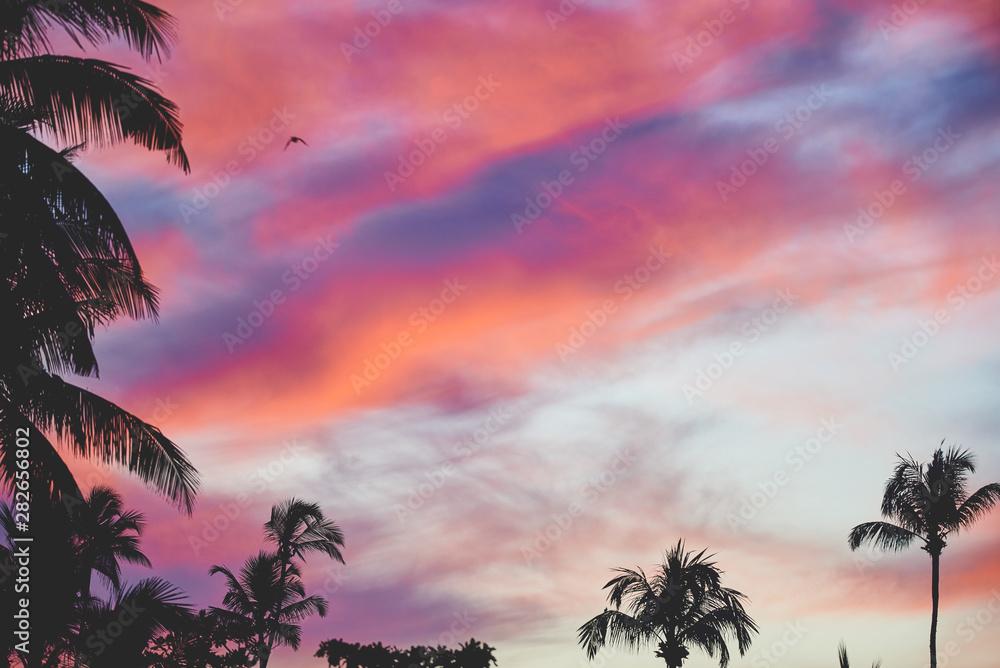Fototapety, obrazy: Sunset with palms 3