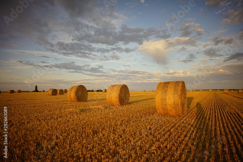 Fényképezés  Paysage Campagne 569