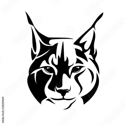 Fotografia wild lynx looking straight forward - bobcat en face head black and white vector