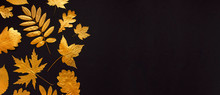 Flat Lay Creative Autumn Composition. Golden Leaves On Black Background Top View Copy Space. Fall Concept. Autumn Background. Minimal Concept Idea, Floral Design