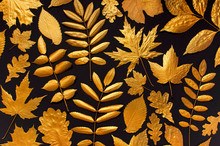 Flat Lay Creative Autumn Composition. Pattern Of Golden Leaves On Black Background Top View. Fall Concept. Autumn Background. Minimal Concept Idea, Floral Design