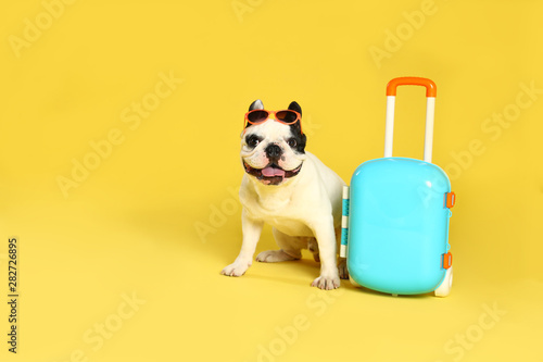 Foto auf Leinwand Französisch bulldog French bulldog with sunglasses and little suitcase on yellow background. Space for text