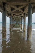 Underneath A Fishing Pier In P...