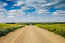 A Long Dirt Road In Rural North Dakota With A Bright Blue Sky With Clouds In The Horizon