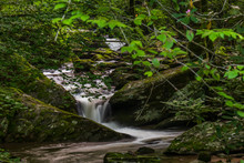 Mountain Stream And Small Wate...