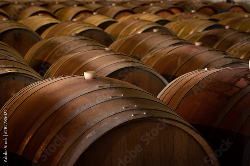 Stampa su Tela old barrels of wine in a cellar