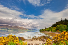 Summer Landscape Of Loch Linnh...