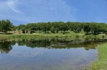 Wide View Of A Beautiful Lake With Reflections In The Water At Chickasaw National Recreation Area In Davis, Oklahoma