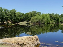 Scneic View Of A Small Lake At The Chickasaw National Recreation Area In Davis, Oklahoma