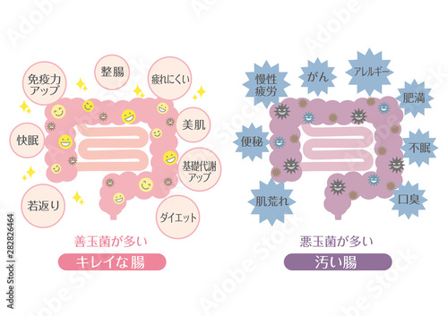 Obraz na plátně 腸活_B