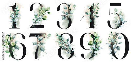 Photo  Number set with watercolor flowers roses and leaf