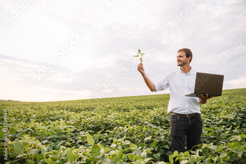 Photo Young agronomist holds tablet touch pad computer in the soy field and examining crops before harvesting