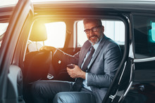 Senior Bearded Gray Haired Businessman Sitting Backseat In Car