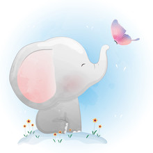 Cute Baby Elephant  Playing Wi...