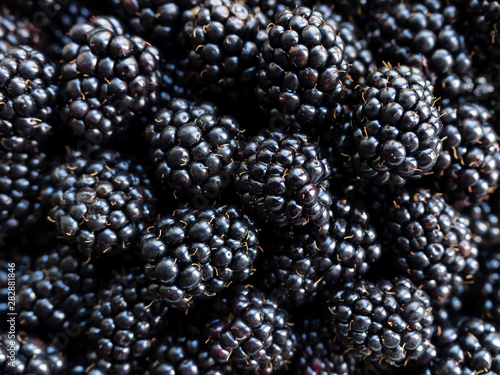 Fresh juicy organic dewberry Canvas-taulu