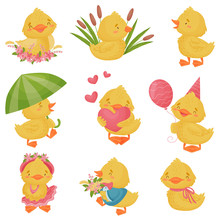 Set Of Cute Ducklings. Vector ...