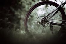 The Rear Wheel Of A Mountain B...