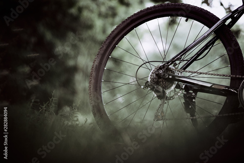 Fotografiet The rear wheel of a mountain bike close-up