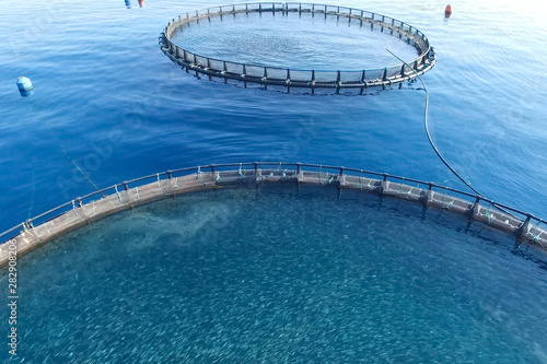 Fish farm in the sea, fenced with round net. Canvas Print