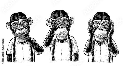 Obraz Three wise monkeys. Not see, not hear, not speak. Vintage engraving - fototapety do salonu