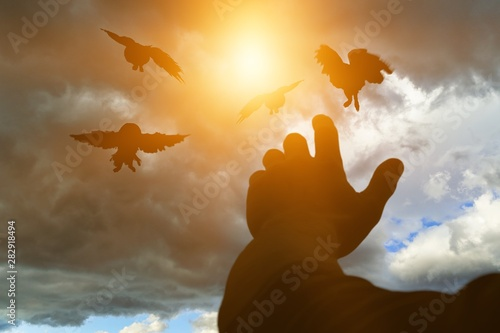 Staande foto Vogel Close-up photo of male hands with birds on clouds background