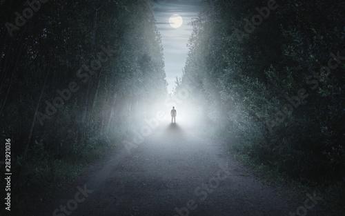 Fototapeta Silhouette of a man in a dark and foggy forest obraz