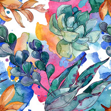Succulents Floral Botanical Flowers. Watercolor Background Illustration Set. Seamless Background Pattern.