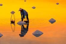 Woman Workers Collecting Freshly Harvested Salt Into Baskets At Sunrise In Hon Khoi Salt Field, Nha Trang Province, Vietnam