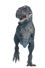 Tyrannosaurus Rex Is Looking D...