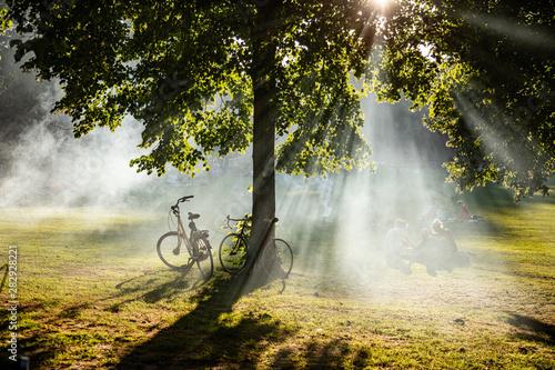Foto auf Gartenposter Rotterdam Rotterdam, Netherlands. People relaxing on the grass, summer afternoon in a city park.