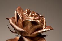 Golden Rose Flower, Metallic P...