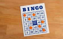 Bingo Game Cards. Bingo Number...