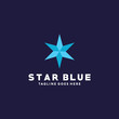 Flat Star Vector Logo Design Template.