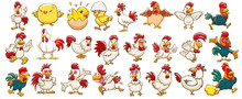 Chicken Vector Set Graphic Clipart Design