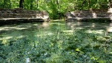 Buffalo Springs At The Head Of...