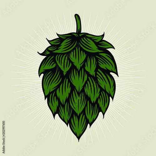 Cuadros en Lienzo  Beer hop illustration in engraving style