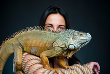 Sexy Woman In Underwear In Studio With Green Iguana