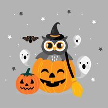 Cute Owl In A Halloween Pumpkin.