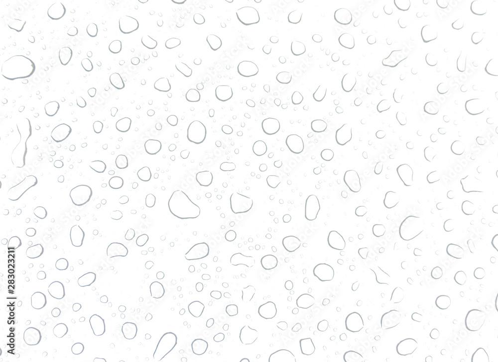 Fototapety, obrazy: Sehr heller Hintergrund mit frischen Wassertropfen