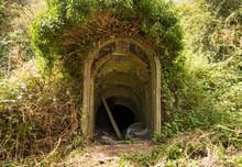Overgrown WW2 Concrete Bunker Entrance